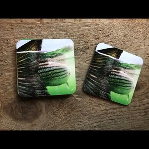 Other - Striped bass coasters striper coasters bass fish